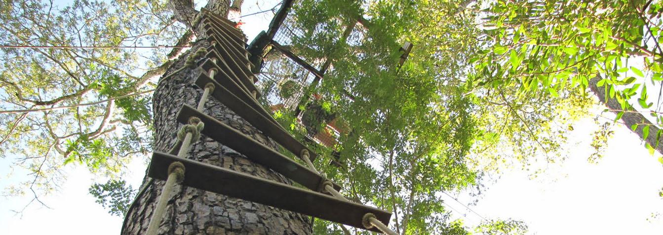 Arvorismo e Tirolesa em Itacaré