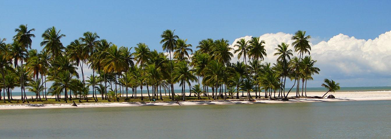 Ilha dos Amores, Ponta do Curral, Coroa e de Gamboa
